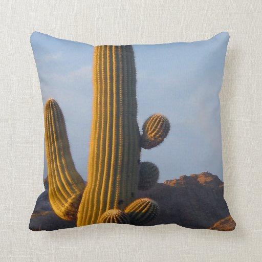 Sunlit Saguaro Cactus - Pillow