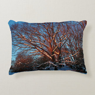 Sunlit Snow Covered Trees Accent Pillow