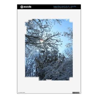 Sunlit Snowy Trees Starburst Blue Sky Winter iPad 3 Decals