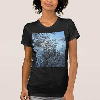 Sunlit Snowy Trees Starburst Blue Sky Winter T-Shirt