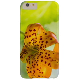 Sunlit Tiger Lily iPhone 6 Case