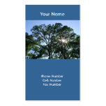 Sunlit Tree Business Cards