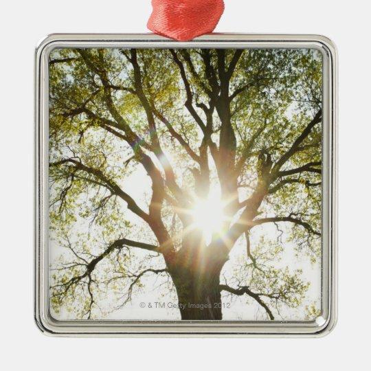 Sunlit Tree Metal Ornament