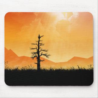 Sunlit Tree Mouse Pad