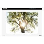 """Sunlit Tree Skin For 15"""" Laptop"""