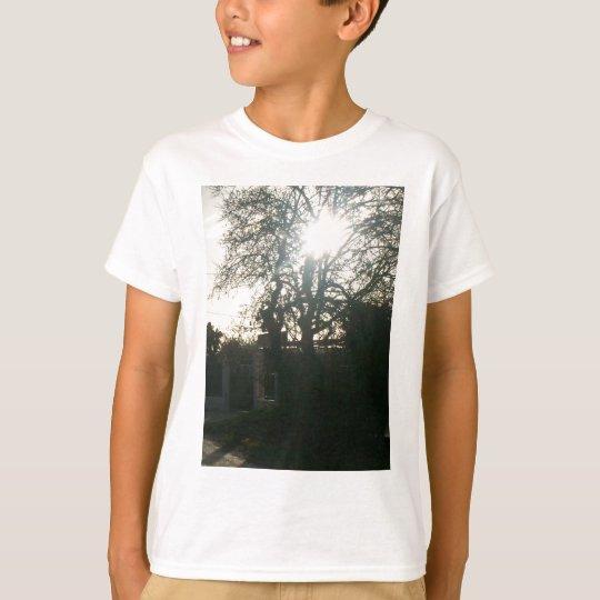 Sunlit tree. T-Shirt