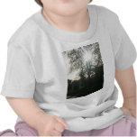 Sunlit tree. t-shirts