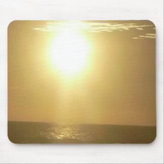 SUNN TAPETES DE RATONES