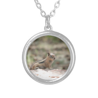 Sunning Ground Squirrel Silver Plated Necklace