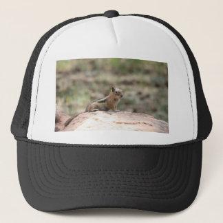 Sunning Ground Squirrel Trucker Hat