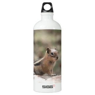 Sunning Ground Squirrel Water Bottle