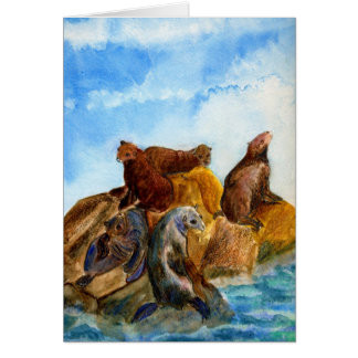 Sunning Harbor Seals - watercolor Greeting Cards