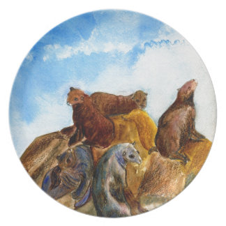 Sunning Harbor Seals - watercolor Dinner Plates
