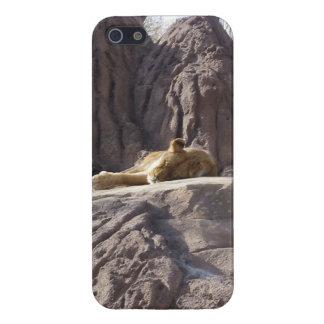 Sunning Lion Cell Phone Cover