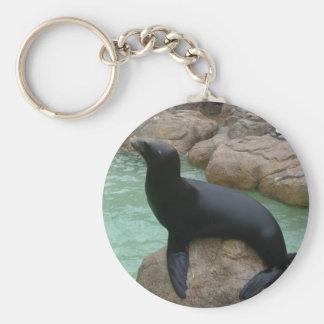 Sunning Seal Keychain
