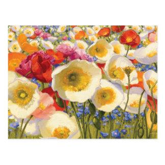 Sunny Abundance Postcard