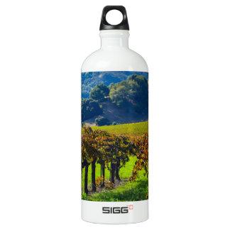 Sunny Autumn Vineyard Aluminum Water Bottle