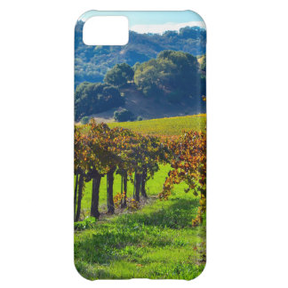 Sunny Autumn Vineyard Cover For iPhone 5C