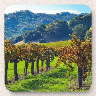 Sunny Autumn Vineyard Drink Coaster