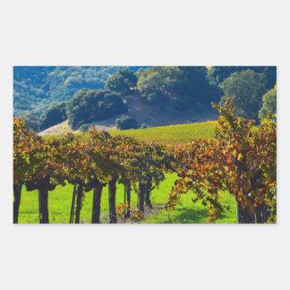 Sunny Autumn Vineyard Rectangular Sticker