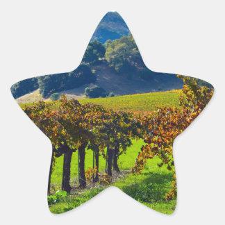 Sunny Autumn Vineyard Star Sticker