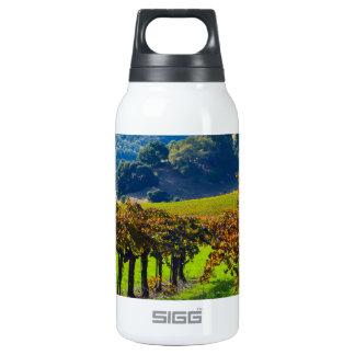Sunny Autumn Vineyard Thermos Bottle
