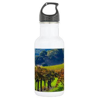 Sunny Autumn Vineyard Water Bottle