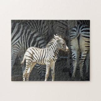 Sunny Baby Zebra Jigsaw Puzzle