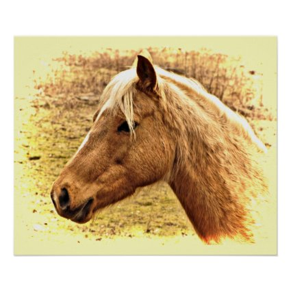 Sunny Blonde and Brown Horse Animal Poster