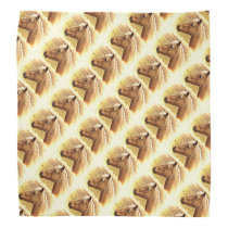 Sunny Blonde Brown Horse Animal Bandana