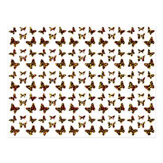 Sunny Bright Colors Leopard Spot Butterflies Postcard