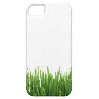 Sunny bright green grass earth photograph print iPhone SE/5/5s case