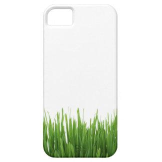 Sunny bright green grass earth photograph print iPhone SE/5/5s case