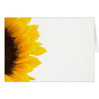 Sunny bright Sunflower photograph Card