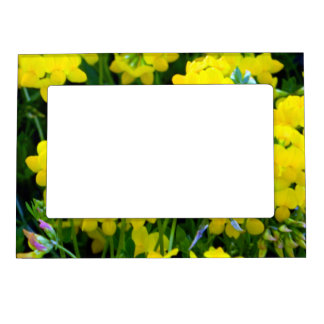 Sunny Buttercup Magnetic Photo Frame