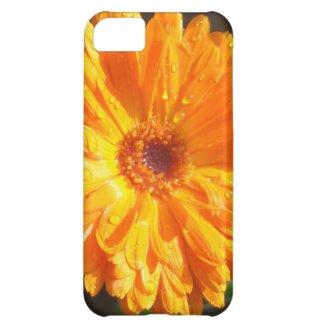 Sunny Calendula Raindrops iPhone 5C Case