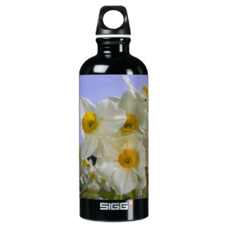 Sunny Daffodils! Water Bottle