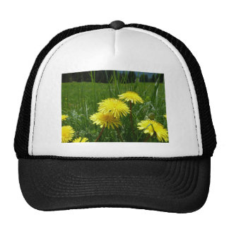 Sunny Dandelion Trucker Hat