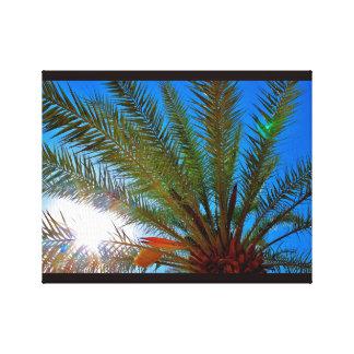 Sunny Date Tree Canvas Print