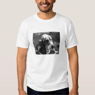 Sunny Day Basset Shirt