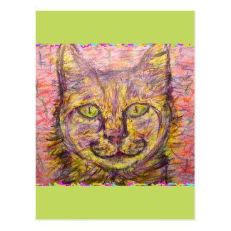 sunny day cat hey postcard