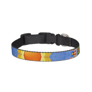 Sunny Day Colorful Dog Collars