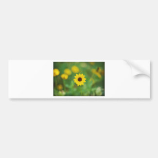 sunny day flower bumper sticker