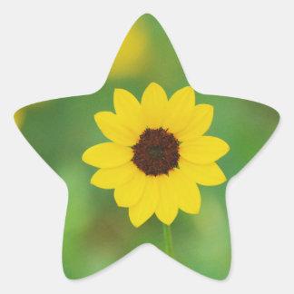 sunny day flower star sticker
