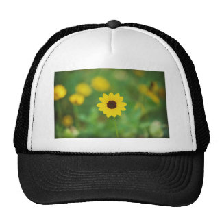 sunny day flower trucker hat