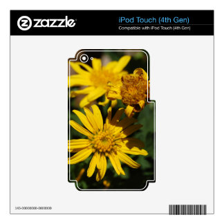 Sunny Day Flowers iPod Touch 4G Decal
