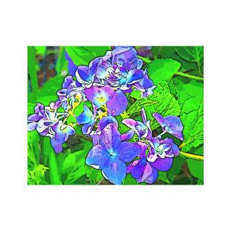 Sunny Day Hydrangeas Canvas Print