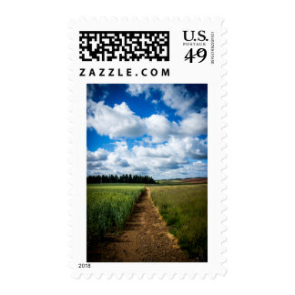 Sunny Day Stamp