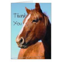 Sunny Day Thank You Card