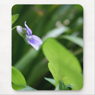 Sunny Day - Wild Violets - Floral Photography Mouse Pad
